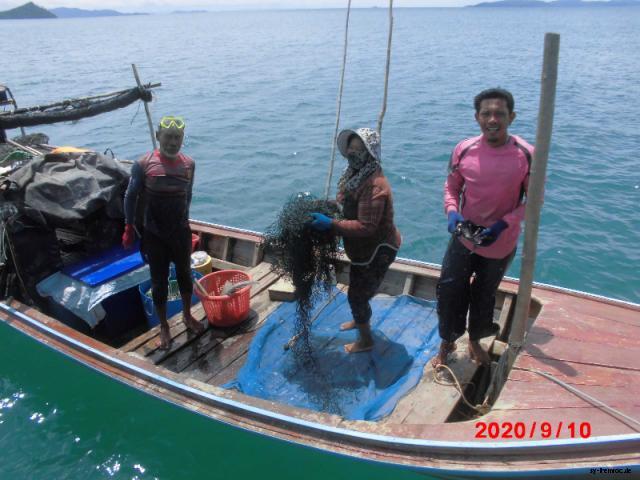 20200910 erfolgreiche fischer